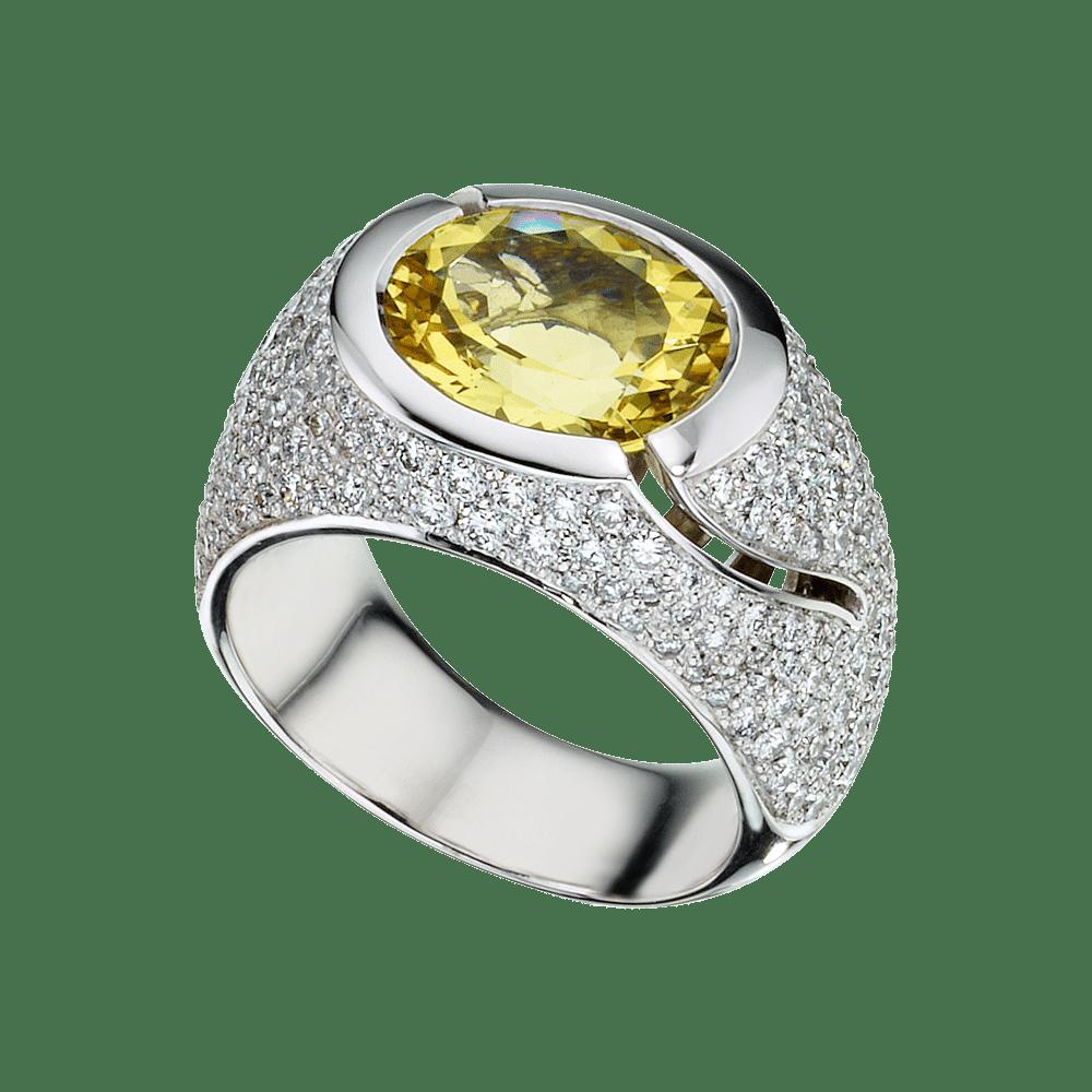 Leo Wittwer, Ring