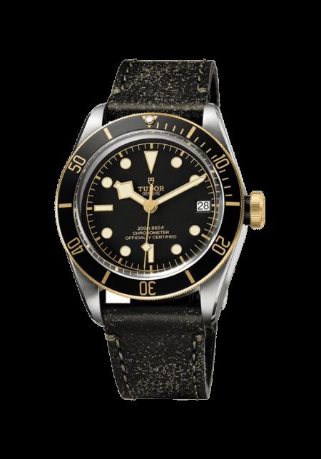 Tudor, Heritage Black Bay S&G, 79733N