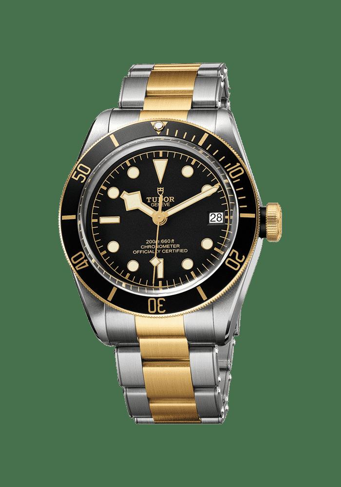 Tudor, Heritage, Black Bay S&G, 79733N